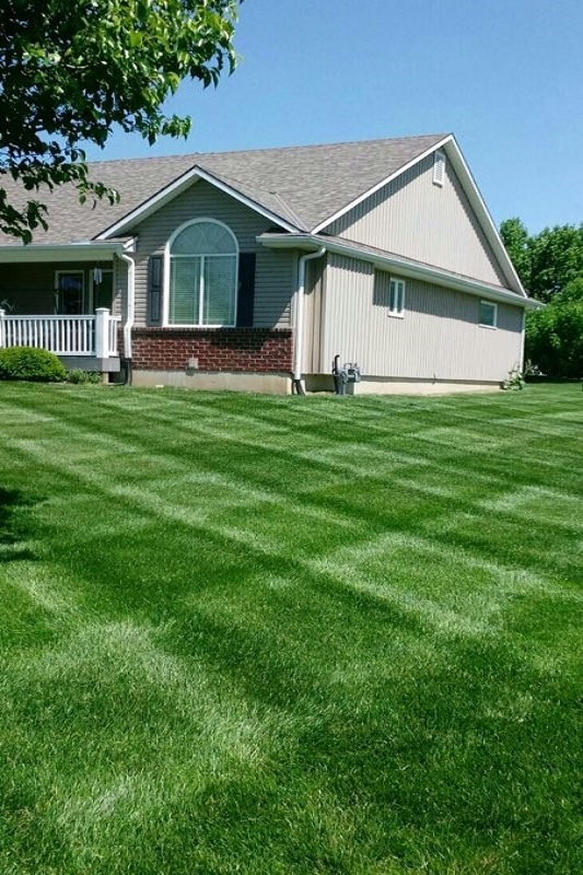 Lawn services with Kohler Lawn & Outdoor include mowing.