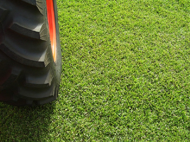 Turf Treatment: Preventative Fall Lawn Maintenance Kohler