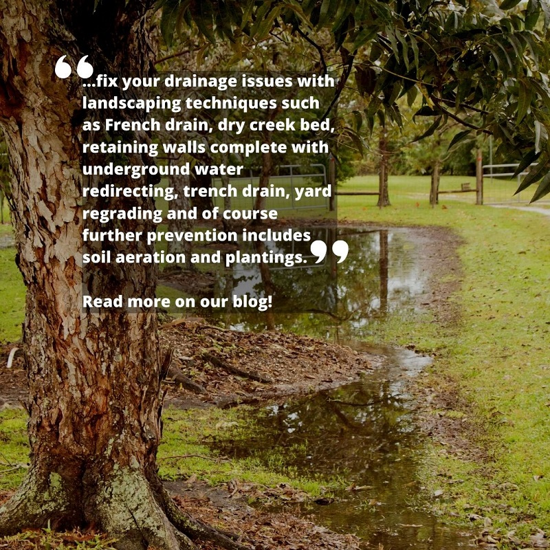 Landscaping Can Help With Drainage Solutions